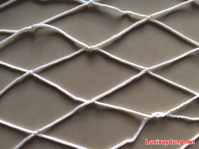Lưới an toàn Thanh Xuân